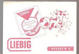 Buvard LIEBIG Buvard N°6 LIEBIG Consommé Familial Aux Pates - Soups & Sauces