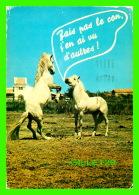 CHEVAUX - HORSES - FAIS PAS LE CON, J'EN AI VU D'AUTRES !  CIRCULÉE EN 1984 -  COLLECTION ORION - - Chevaux