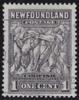 Newfoundlans    .    SG   .     222      .       O      .     Gebruikt   .    /      .        Cancelled - Newfoundland