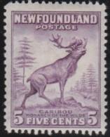 Newfoundlans    .    SG   .      280a     .     *       .     Ongebruikt    .    /      .     Mint-hinged - Newfoundland