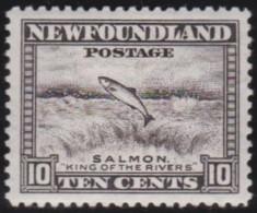 Newfoundlans    .    SG   .      283     .     *       .     Ongebruikt    .    /      .     Mint-hinged - 1908-1947