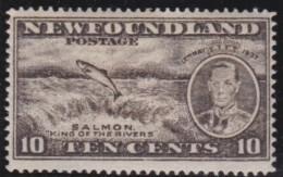 Newfoundlans    .    SG   .      261b       .     *       .     Ongebruikt    .    /      .     Mint-hinged - Newfoundland