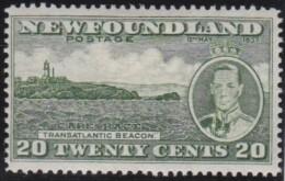 Newfoundlans    .    SG   .      264e         .     *       .     Ongebruikt    .    /      .     Mint-hinged - Newfoundland