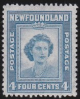Newfoundlans    .    SG   .      293     .     *       .     Ongebruikt    .    /      .     Mint-hinged - Newfoundland