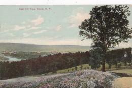 New York Elmira East Hill View