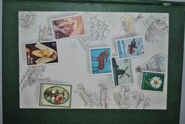 Europe Années 60 Carte Avec Reproductions Timbres - Autres - Europe