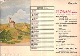 PORTUGAL MATA BORRAO BUVARD BLOTTER  20.8 X 14.7 CMS - 1940 MOULIN MILL MEDECINE ADVERTISING ( 2 SCANS ) - Paints