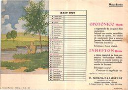 PORTUGAL MATA BORRAO BUVARD BLOTTER  20.8 X 14.7 CMS - 1940 PECHE FISHING MEDECINE ADVERTISING ( 2 SCANS ) - Paints