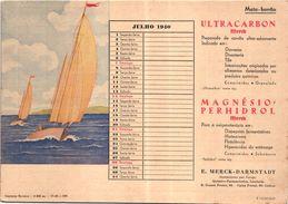 PORTUGAL MATA BORRAO BUVARD BLOTTER  20.8 X 14.7 CMS - 1940 SAILING A VOILE  MEDECINE ADVERTISING ( 2 SCANS ) - Paints