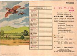 PORTUGAL MATA BORRAO BUVARD BLOTTER  20.8 X 14.7 CMS - 1940 BIRDS OISEAUX MEDECINE ADVERTISING ( 2 SCANS ) - Paints