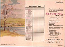 PORTUGAL MATA BORRAO BUVARD BLOTTER  20.8 X 14.7 CMS - 1940 MEDECINE ADVERTISING ( 2 SCANS ) - Paints