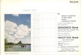 PORTUGAL MATA BORRAO BUVARD BLOTTER  21.2 X 14.5 CMS - 1941 CHURCH EGLISE MERCK MEDECINE ADVERTISING - Paints