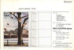 PORTUGAL MATA BORRAO BUVARD BLOTTER  21.2 X 14.5 CMS - 1941  MERCK MEDECINE ADVERTISING - Paints