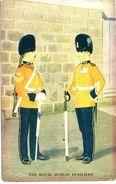 MILITARY - THE ROYAL DUBLIN FUSILIERS  Mil13 - Reggimenti