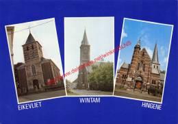 Eikevlier - Wintam - Hingene - Hingene - Bornem