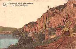 PROFONDEVILLE - Le Tunnel Et Les Rochers - Profondeville