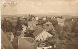 Haut-Fays - Panorama - Circulé 1928, Signé Alice, Arthur Et Marie -  - Edit. Albert - Stral, Haut-Fays - Daverdisse