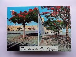 LUANDA FORT FORTRESS Postcard 1960years AFRICA AFRIKA AFRIQUE ANGOLA    Z1 - Unclassified