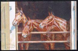 CHEVAUX à L'écurie - HORSES In The Stable - PFERDEN - Non Circulé - Not Circulated - Nicht Gelaufen. - Chevaux
