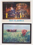 2 Nos. Sri Lanka KANDY PERAHARA & WILD ELEPHANTS Unposted Color Postcards - Sri Lanka (Ceilán)