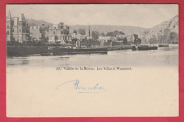 Waulsort - Les Villas … En Bord De Meuse  -1902 ( Voir Verso ) - Hastière