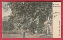 Waulsort -  Au Robinson, Jolie Carte Couleur  -1902 ( Voir Verso ) - Hastière