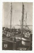 Cp , Bateaux De Pêche , 56 , Morbihan , ETEL , Chalutiers , Vierge , Ed : Briand - Pêche
