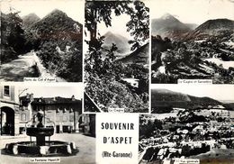 SOUVENIR D'ASPET - Carte Multi- Vues. - Other Municipalities