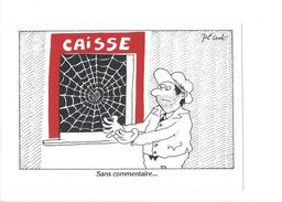 18230 - Pécub Caisse Sans Commentaires Toile Araignée - Illustrateurs & Photographes