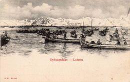 Cpa   NORVEGE   DYBSAGNFISKE    -   LOFOTEN - Norvège