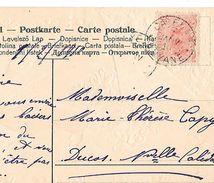 Timbre GUYANE FRANCAISE - TAMANOIR 10c Oblitéré Janvier 1910 De CAYENNE Pour DUCOS -Nelle Calédonie Sur Cpa Gaufrée (E23 - Guyane Française (1886-1949)