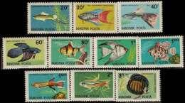 HONGRIE - Poissons 1962 - Peces