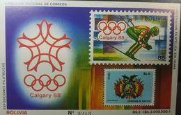 L) 1988 BOLIVIA, WINTER OLYMPIC GAMES, CALGARY, COAT OF ARMS, FULL COLORS, SOUVENIR SHEET, MNH - Bolivia