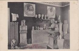 CARTOLINA - POSTCARD - MUSEUM , AQUILEIA - Altri