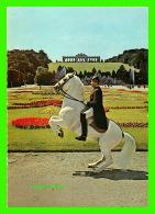CHEVAUX - HORSES -  SPANISCHE REITSCHUTE WIEN - LEVADE - - Chevaux