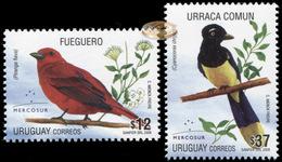 Uruguay. 2008. Mercosur - Birds  (MNH OG **) Set Of 2 Stamps - Uruguay