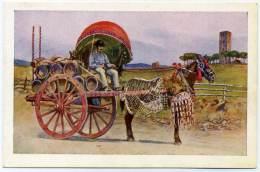 S.412.  ROMA - Costumi Romani - Carro A Vino - Transports