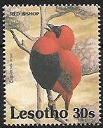 Lesotho - 1992 - MNH - Southern Red Bishop (Euplectes Orix) - Zangvogels