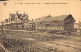 Ciney - Intérieur De La Gare - Le Réseau Bruxelles-Luxembourg (G. Hermans) - Ciney