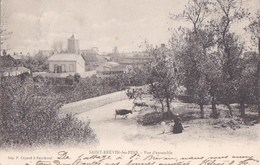 44 SAINT BREVIN  Jolie Vue Sur Le VILLAGE  FEMME ENFANTS Et VACHES Sur Le Chemin Timbre 1902 - Saint-Brevin-l'Océan