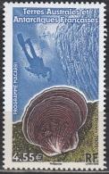TAAF 2009 Yvert 527 Neuf ** Cote (2015) 18.00 Euro Plongeur Et Coquillage - Terres Australes Et Antarctiques Françaises (TAAF)