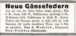 Original-Werbung/ Anzeige 1929 - GÄNSEFEDERN / WODRICH - NEU-TREBBIN - Ca. 60 X 35 Mm - Werbung