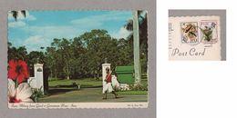 FIJI ISLAND SUVA Postcard Stamp Birds Botanic FIJIAN MILITARY GUARD Z1 - Postcards