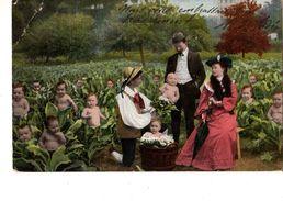 FANTAISIE---Bébés Dans Les Choux--( état Trés Trés Moyen Voir 2 Scans ) - Neonati
