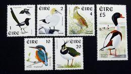 Irland 1016/21 A **/mnh, Einheimische Vögel - 1949-... Republik Irland