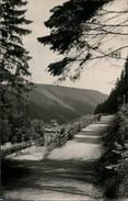 Ansichtskarte Kipsdorf-Altenberg (Erzgebirge) Steinweg Mit Dem Brand 1959 - Kipsdorf