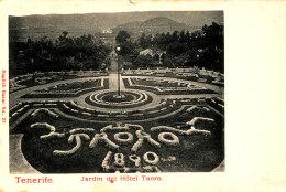 AJ 16 -  C P A - ESPAGNE- TENERIFE  -  JARDIN DEL HOTEL TAORO - Tenerife