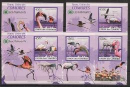 Comores - 2009 - KLB N°Yv. 1711 à 1715 - Flamants - Non Dentelé / Imperf. - Neuf Luxe ** / MNH / Postfrisch - Flamingo