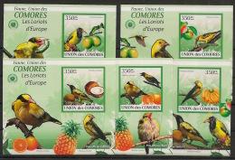 Comores - 2009 - KLB N°Yv. 1736 à 1740 - Loriots - Non Dentelé / Imperf. - Neuf Luxe ** / MNH / Postfrisch - Sparrows