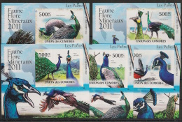 Comores - 2011 - KLB N°Yv. 2150 à 2154 - Paons - Non Dentelé / Imperf. - Neuf Luxe ** / MNH / Postfrisch - Peacocks